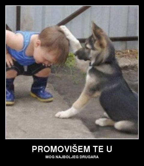 promovisem-te-u