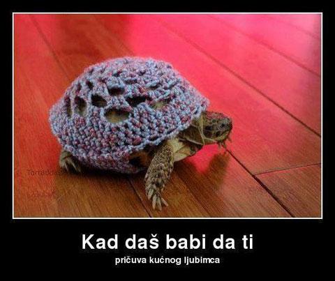 kad-das-babi