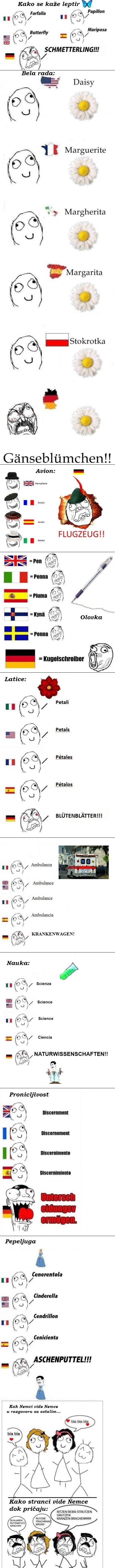 nemacki-jezik-razlika