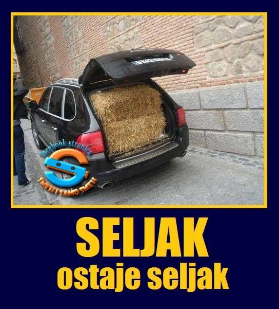 seljak