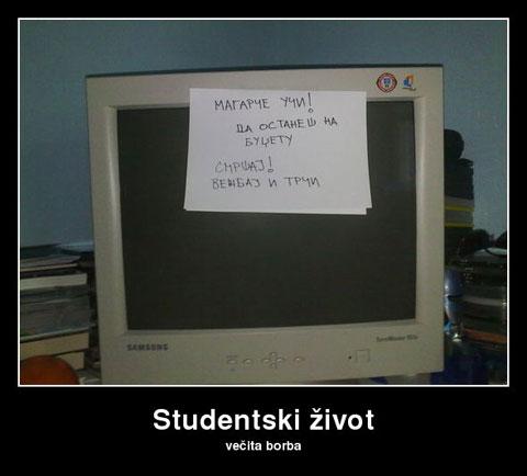 studentski-zivot